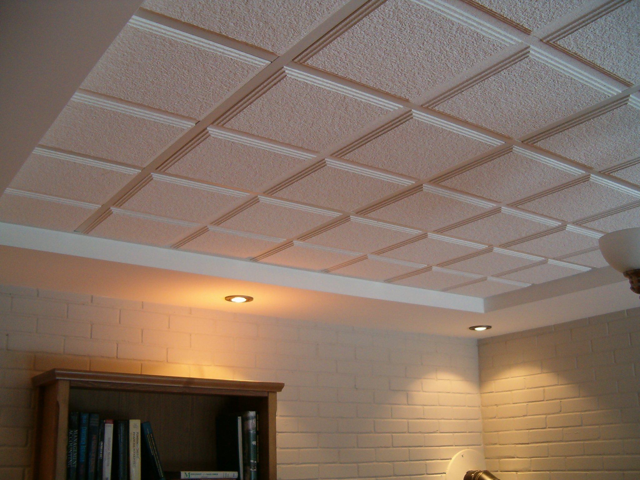 Sous sol distinction r novation for Plafond suspente